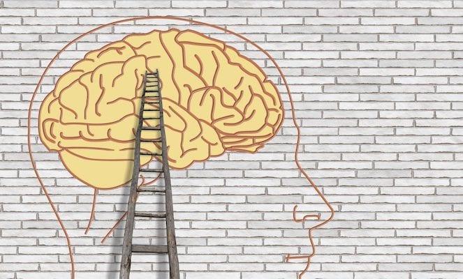 brain and coaching